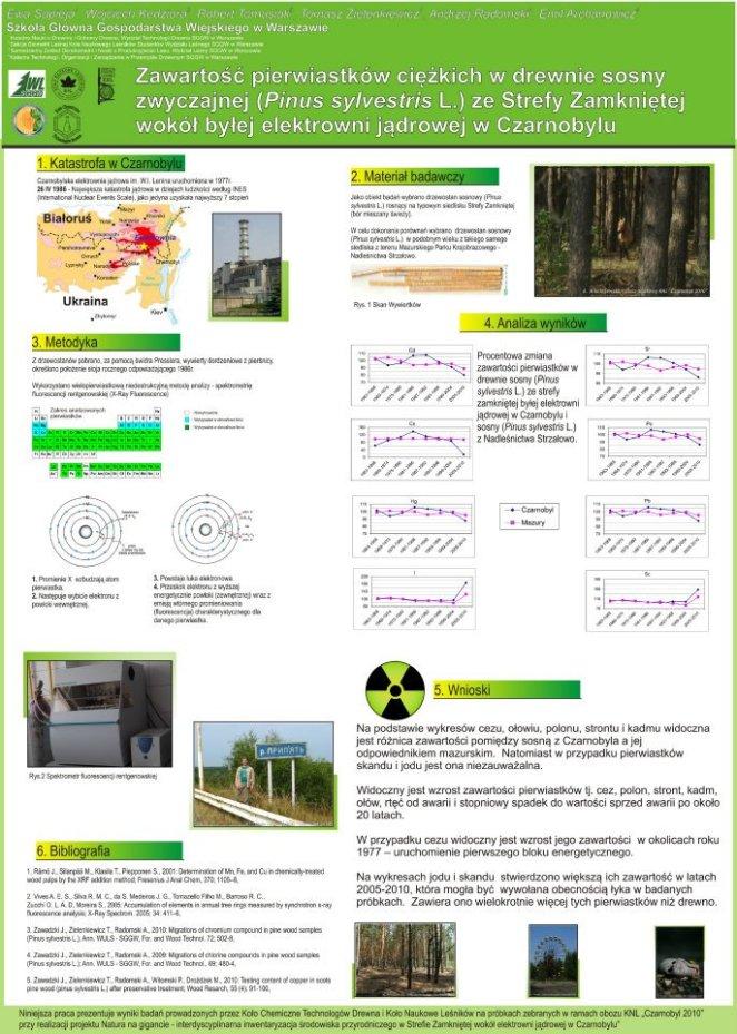 poster Czarnobyl