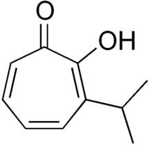 thujaplicin - żywotnik