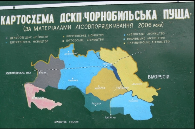 Puszcza Czarnobylska